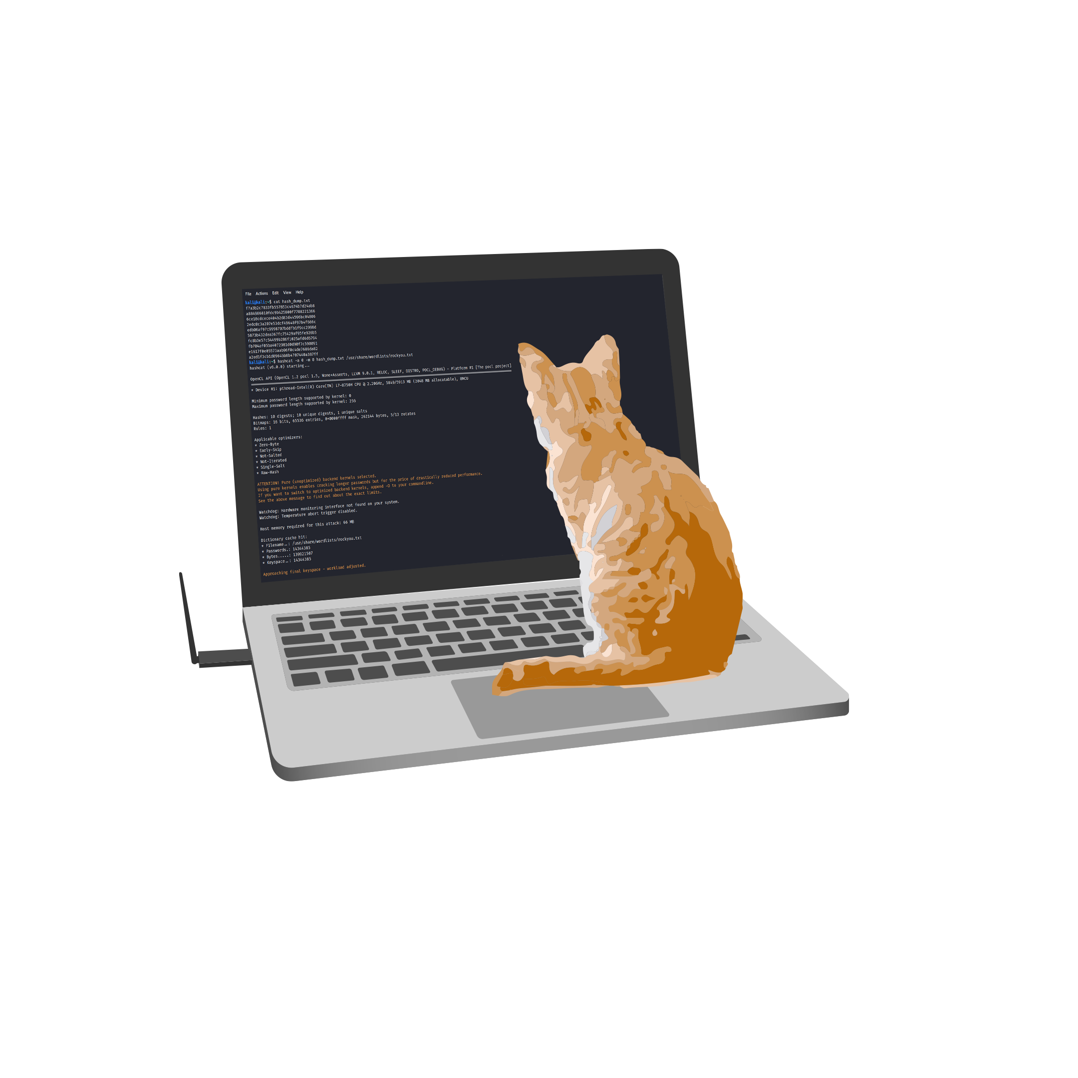 Welcome to CyberCats!